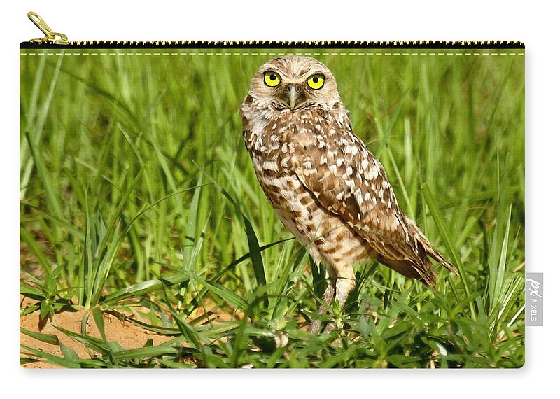 burrowing Owl Carry-all Pouch featuring the photograph Burrowing Owl At It's Burrow by Myrna Bradshaw