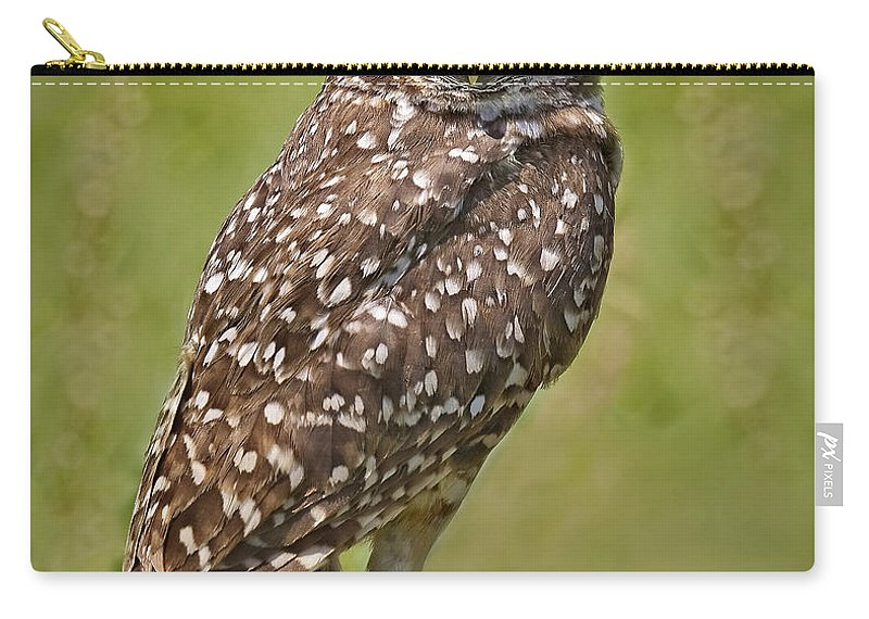 Burrowing Owl Carry-all Pouch featuring the photograph Burrowing Owl by Susan Candelario