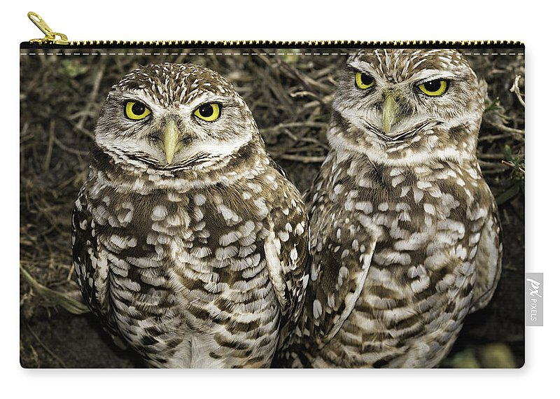Owls Carry-all Pouch featuring the photograph Burrowing Owls by Fran Gallogly