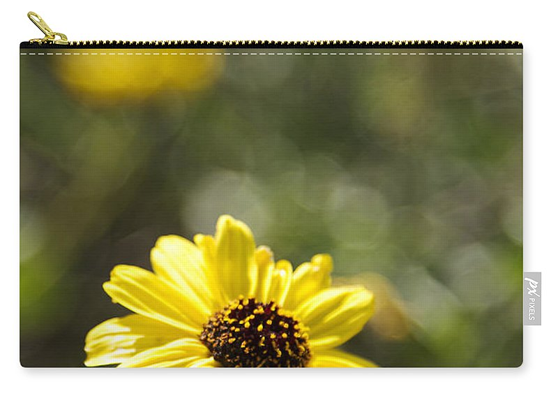 Bush Sunflower Carry-all Pouch featuring the photograph Bush Sunflower 1 by Jessica Velasco