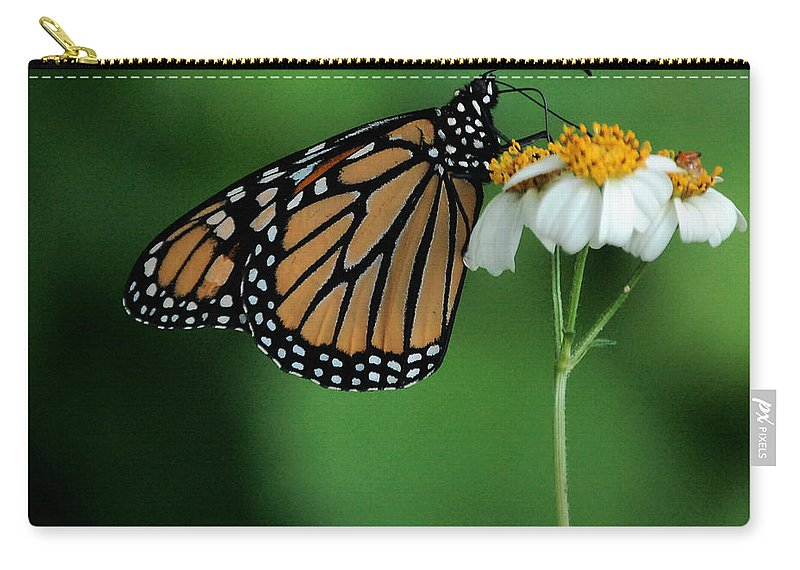 Flower Carry-all Pouch featuring the photograph Butterfly 3 by Leticia Latocki