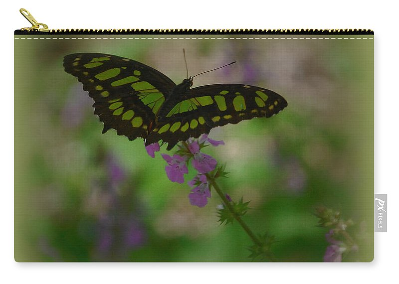 Butterfly Carry-all Pouch featuring the photograph Butterfly 4 by Leticia Latocki