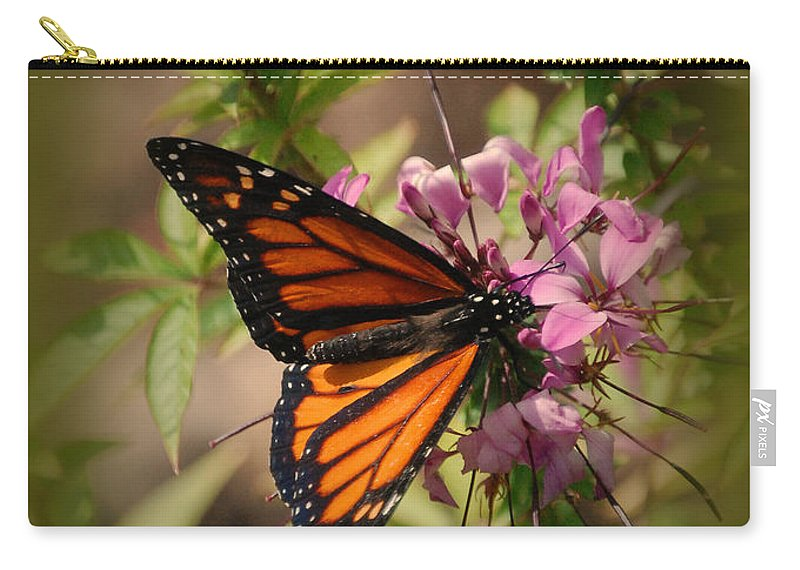 Butterfly Carry-all Pouch featuring the photograph Butterfly 5 by Leticia Latocki