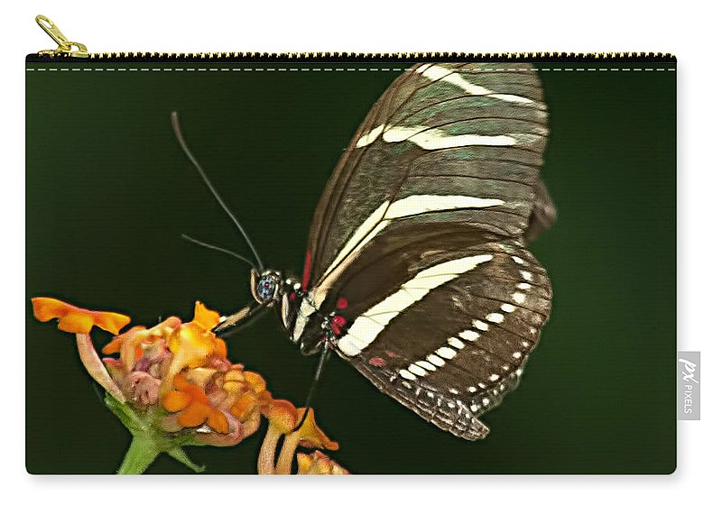 Zebra Carry-all Pouch featuring the photograph Butterfly 50 by Photos By Cassandra