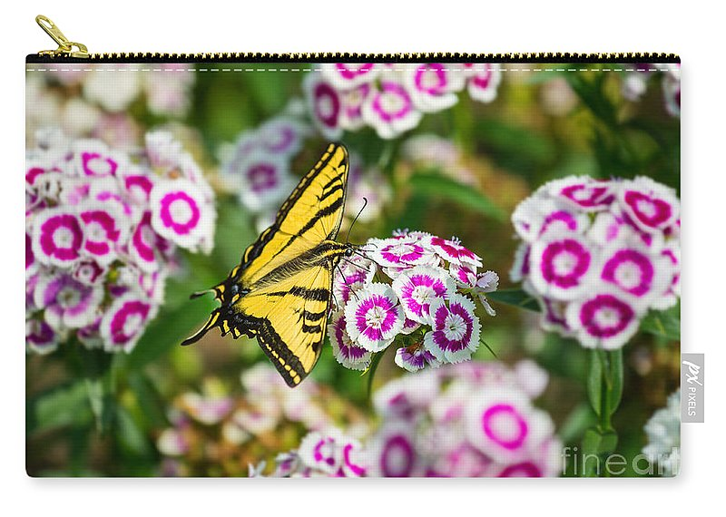 Daianthus Barbatus Carry-all Pouch featuring the photograph Butterfly And Blooms - Spring Flowers And Tiger Swallowtail Butterfly. by Jamie Pham