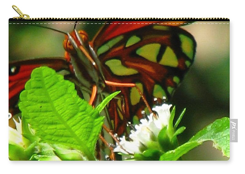 Patzer Carry-all Pouch featuring the photograph Butterfly Art by Greg Patzer