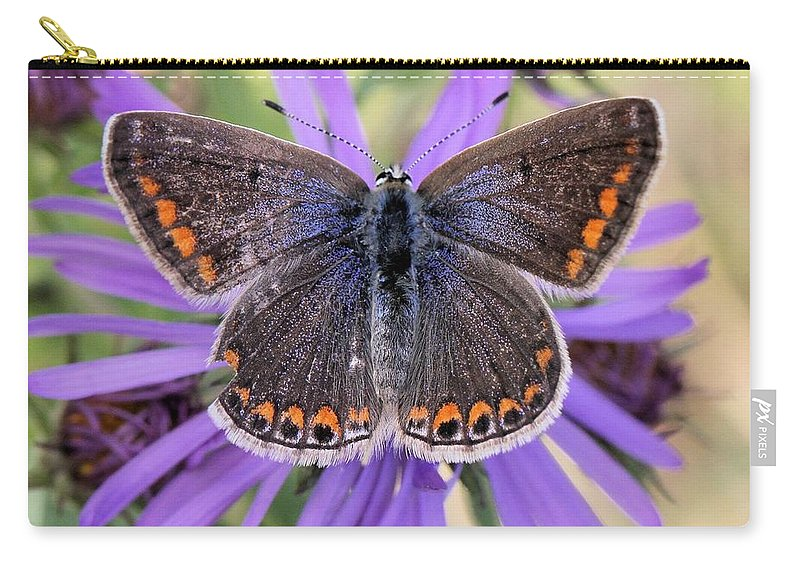 Butterfly Carry-all Pouch featuring the photograph Butterfly Beauty by Doris Potter