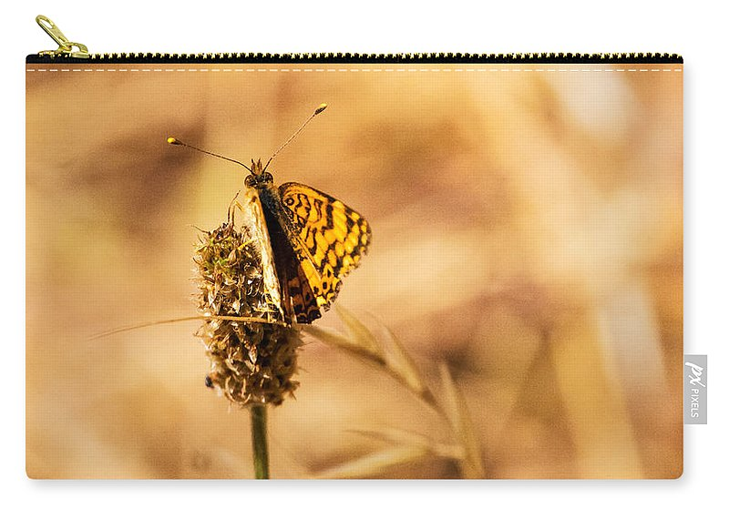 Butterfly Carry-all Pouch featuring the photograph Butterfly Bokeh by Along The Trail