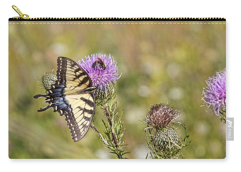 Butterfly Carry-all Pouch featuring the photograph Butterfly by Daniel Sheldon