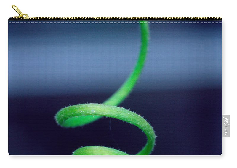Butterfly Carry-all Pouch featuring the photograph Butterfly Eggs by David and Carol Kelly