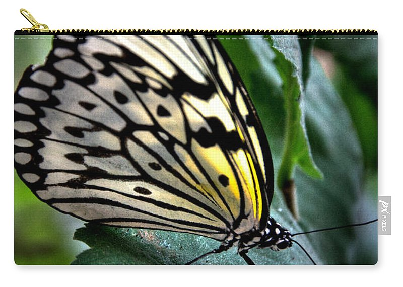 Paper Kite Carry-all Pouch featuring the photograph Butterfly - Green Leaf by Mark Valentine