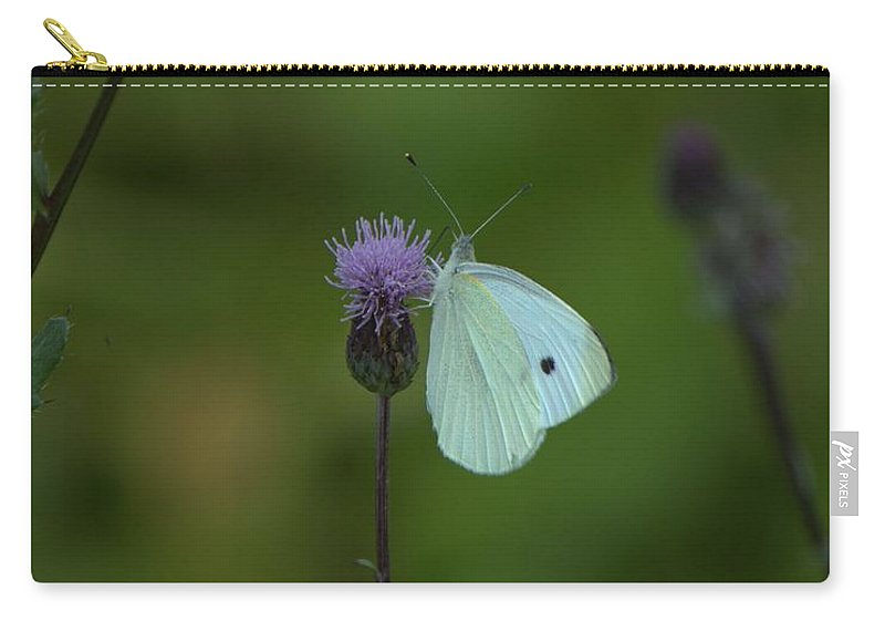 Butterfly Carry-all Pouch featuring the photograph Butterfly In White 2 by John Feiser
