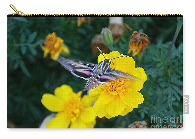 Outdoors Carry-all Pouch featuring the photograph Butterfly Moth by Susan Herber