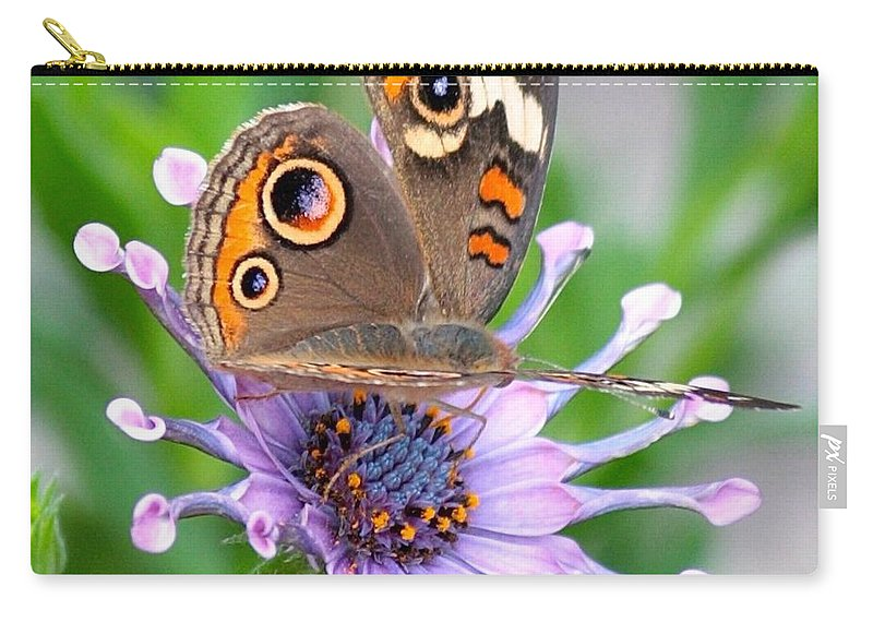 Butterfly Carry-all Pouch featuring the photograph Butterfly On African Daisy by Carol Groenen