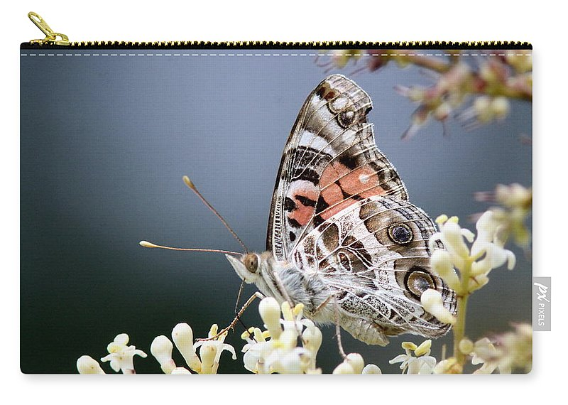 Lady Carry-all Pouch featuring the photograph Butterfly - Painted Lady - Tasty Out Here by Travis Truelove