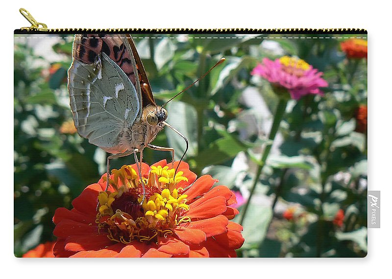Butterfly Carry-all Pouch featuring the photograph Butterfly by Paulo Goncalves