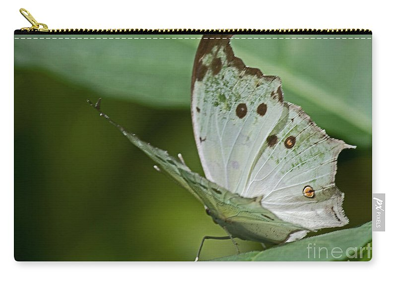 Sandra Clark Carry-all Pouch featuring the photograph Butterfly Ready For Take Off by Sandra Clark
