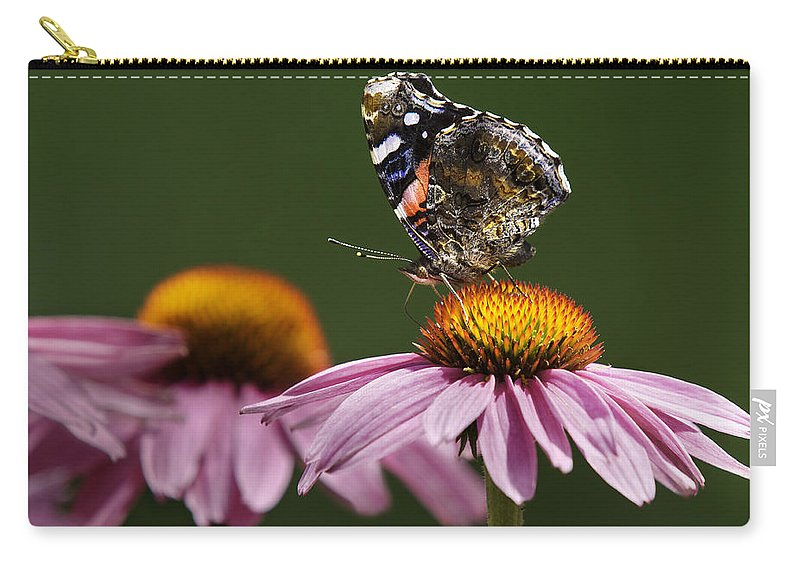 Lepidoptera Nymphalidae Carry-all Pouch featuring the photograph Butterfly Red Admiral On Echinacea by Peter v Quenter