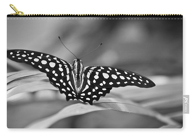 Butterfly Black & White Carry-all Pouch featuring the photograph Butterfly Resting by Ron White
