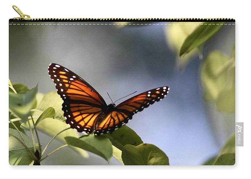 Viceroy Carry-all Pouch featuring the photograph Butterfly - Soaking Up The Sun by Travis Truelove