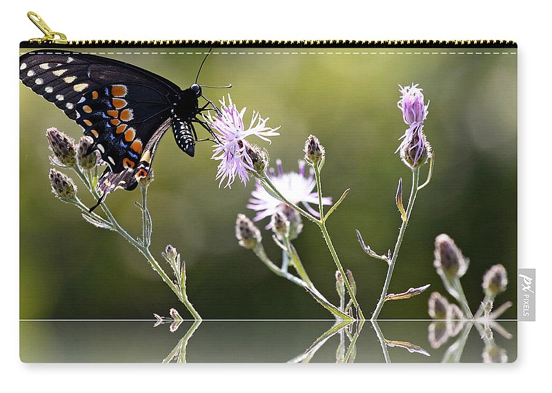 Nature Carry-all Pouch featuring the photograph Butterfly With Reflection by Eleanor Abramson