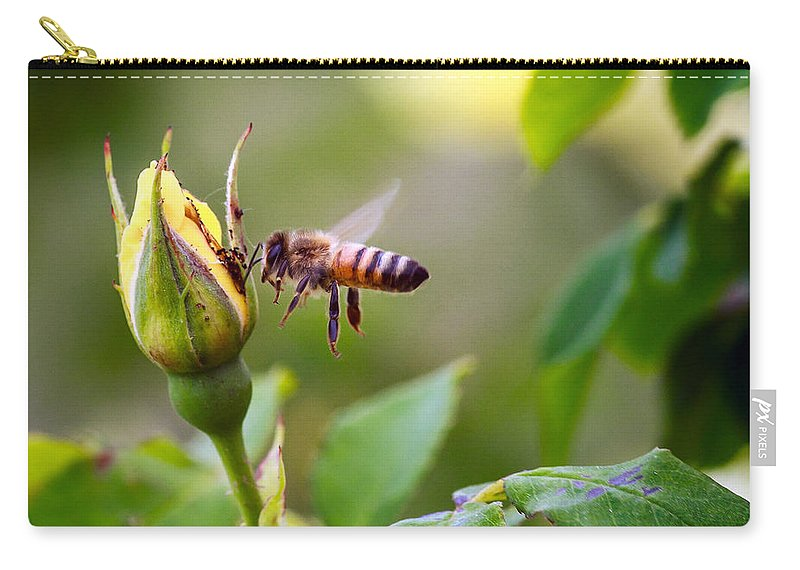 Bumble Bee Carry-all Pouch featuring the photograph Buzz The Bee by Sennie Pierson