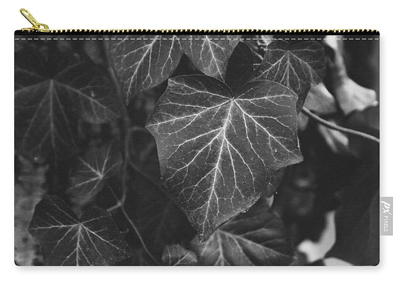 Ivy Carry-all Pouch featuring the photograph Bw Ivy by Pati Photography