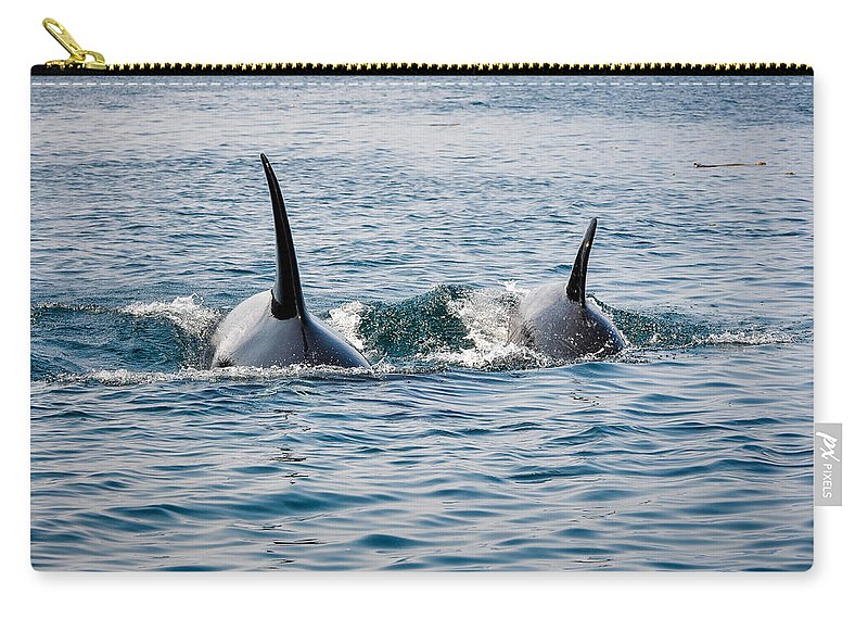 Orca Carry-all Pouch featuring the photograph By My Side by Roxy Hurtubise