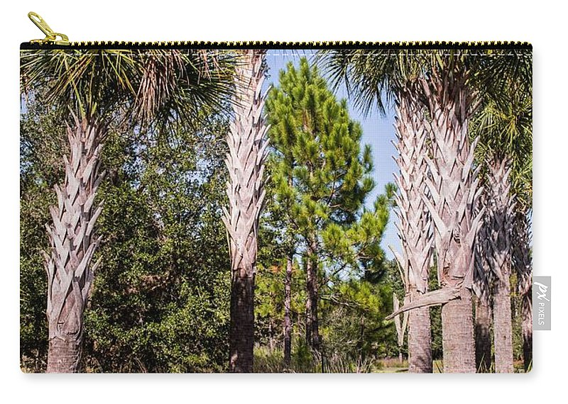 Palms Carry-all Pouch featuring the photograph Cabbage Palm by Zina Stromberg