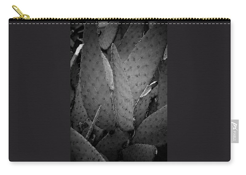 Botanicals Carry-all Pouch featuring the photograph Cactus 5256 by Timothy Bischoff