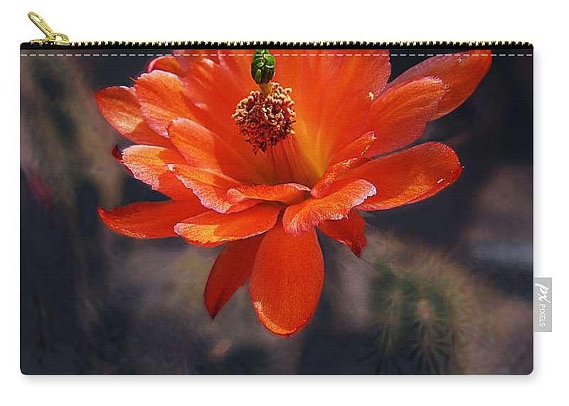 Echinocereus Carry-all Pouch featuring the photograph Cactus Blossom 1 by Xueling Zou