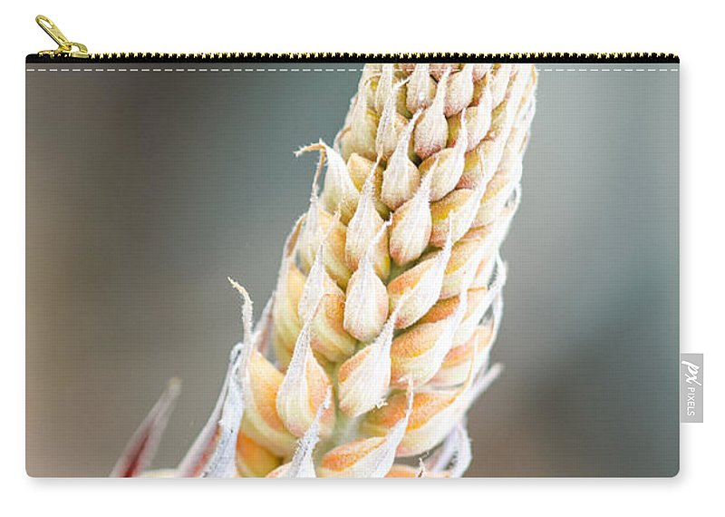 Flower Carry-all Pouch featuring the photograph Cactus Flower by Henrik Lehnerer