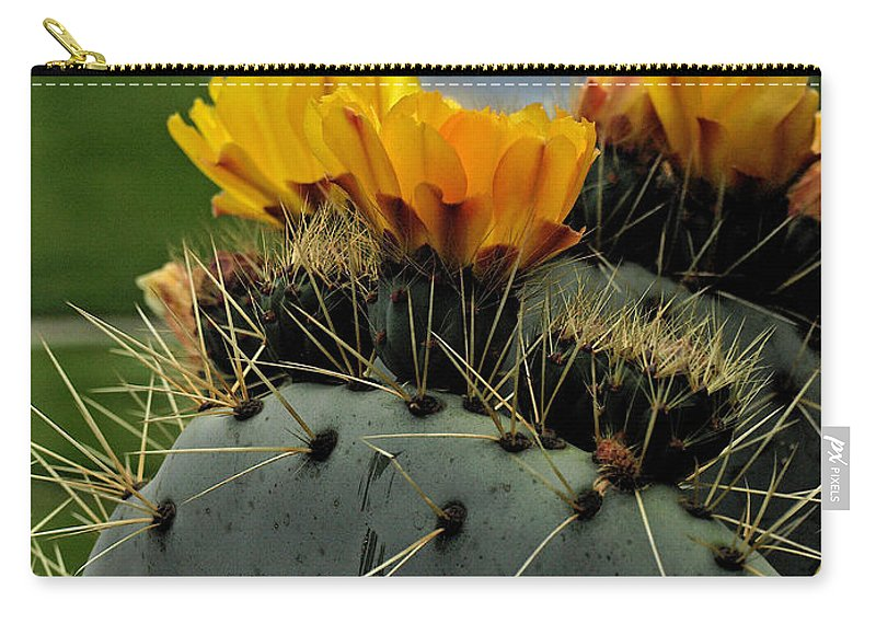 Cactus Carry-all Pouch featuring the photograph Cactus Flower by Jacklyn Duryea Fraizer