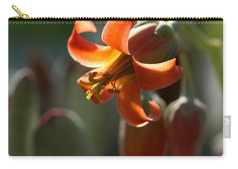 Cactus Carry-all Pouch featuring the photograph Cactus Flower by Kenny Glotfelty