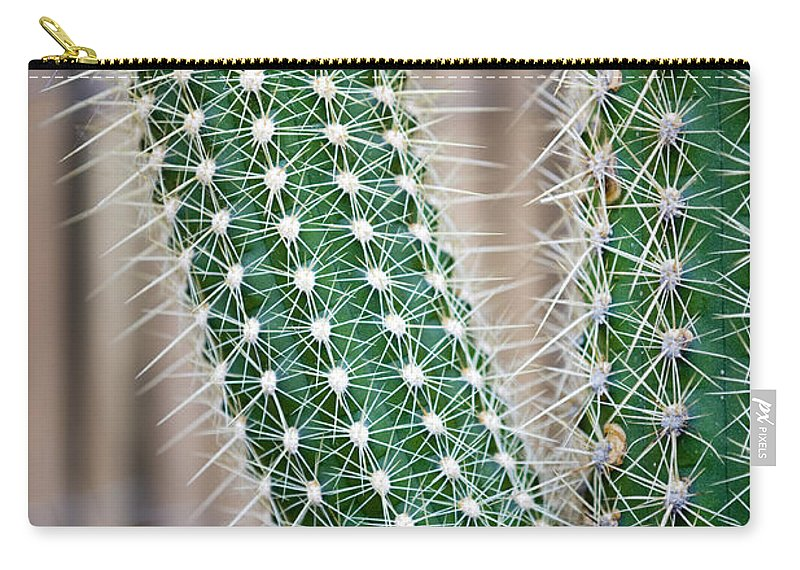 Background Carry-all Pouch featuring the photograph Cactus by Lee Avison