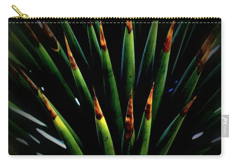 Cactus Carry-all Pouch featuring the photograph Cactus Spines by Scott Hill