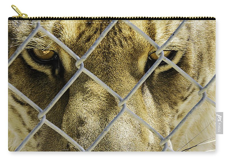 Liger Carry-all Pouch featuring the photograph Caged Liger by LeeAnn McLaneGoetz McLaneGoetzStudioLLCcom