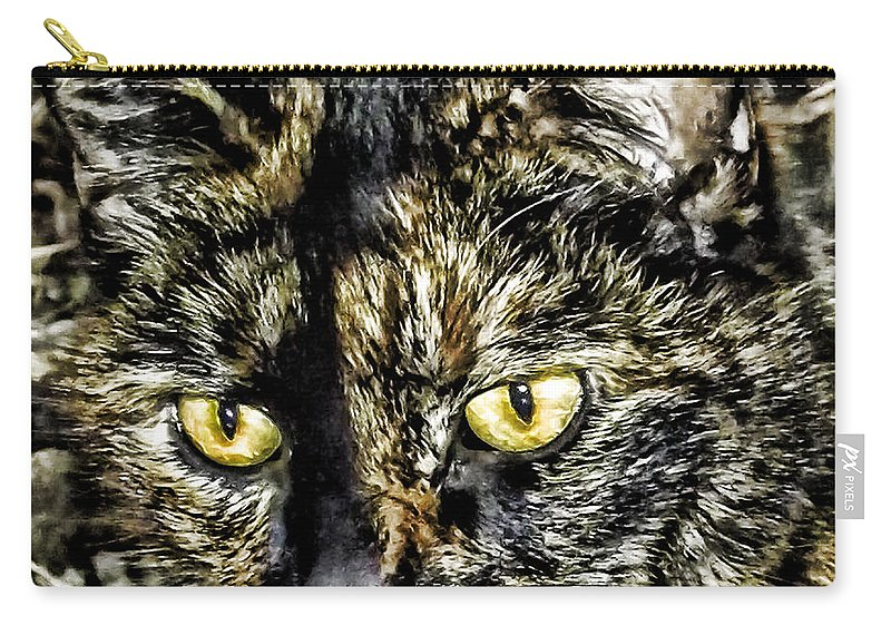 Cat Carry-all Pouch featuring the photograph Cali by Kristie Bonnewell