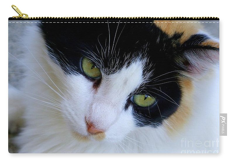 White Carry-all Pouch featuring the photograph Calico 1 by Mary Deal