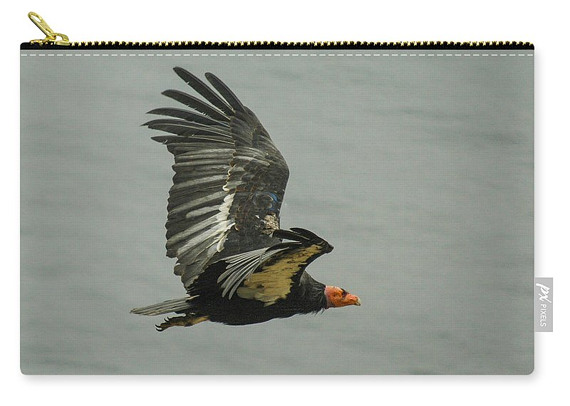 Big Sur Carry-all Pouch featuring the photograph California Condor At Big Sur by Jeff Black