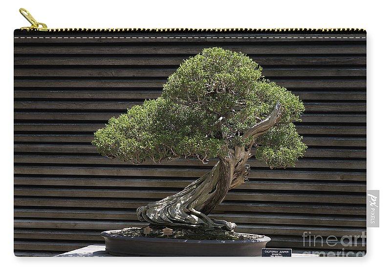 California Juniper Bonsai Tree Carry All Pouch For Sale By Jason O Watson