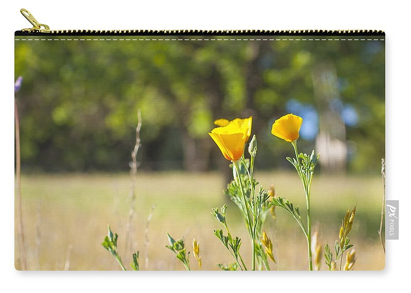 California Carry-all Pouch featuring the photograph California Poppy by Gregory Dean