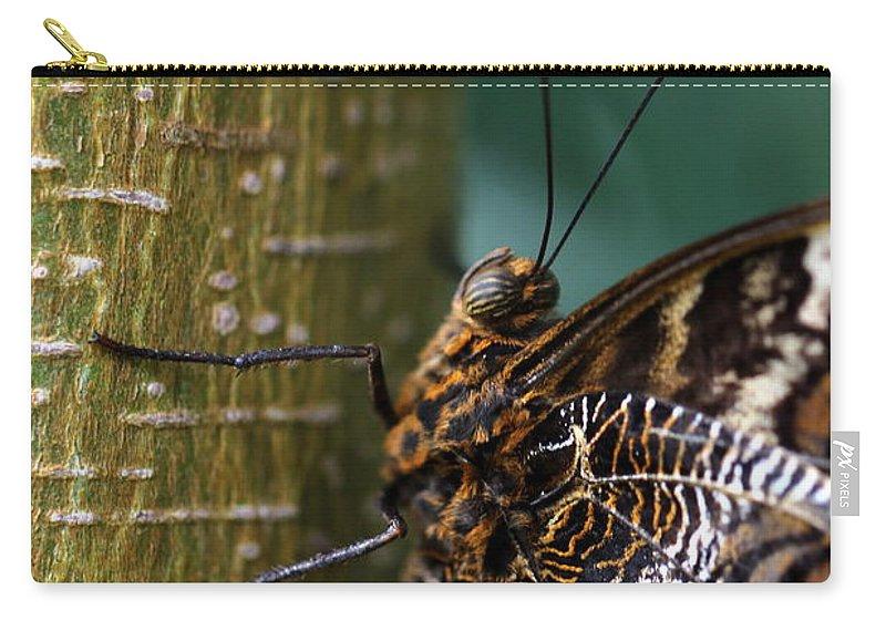 Caligo Carry-all Pouch featuring the photograph Caligo Atreus by Amanda Mohler