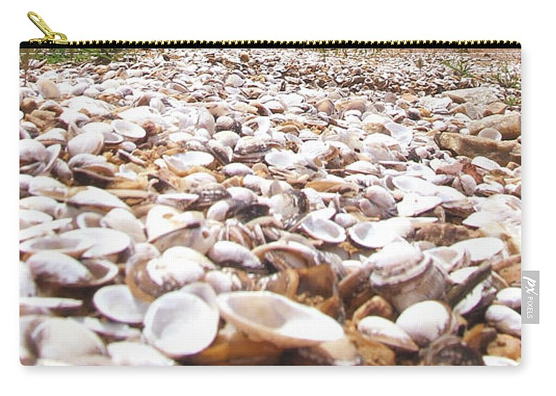 Shelves Carry-all Pouch featuring the photograph Camino by Andrea Anderegg