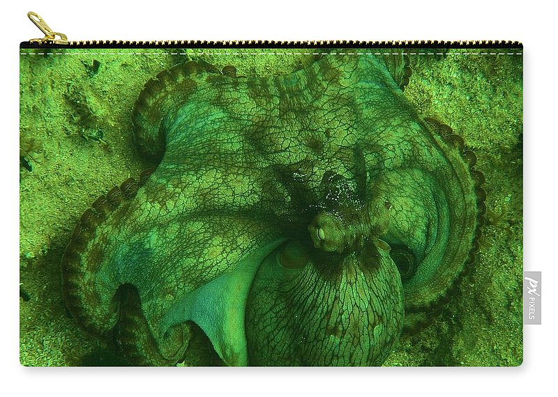 Common Octopus Carry-all Pouch featuring the photograph Camoflauged Octopus by Adam Jewell