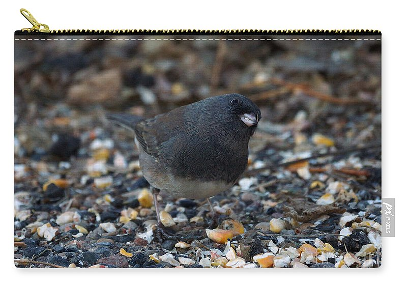 Dark Eyed Junco Carry-all Pouch featuring the photograph Can I Help You by Lori Tordsen