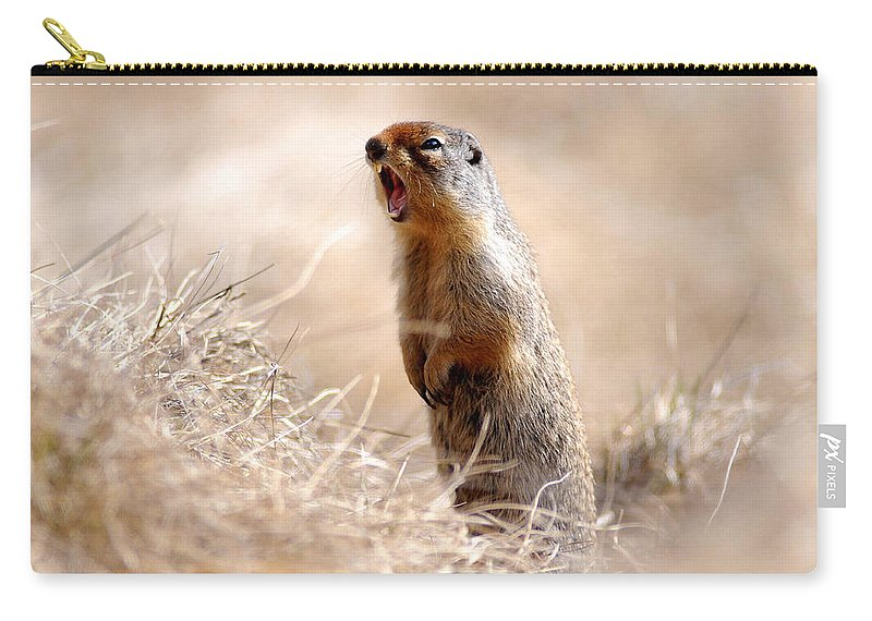 Gofer Carry-all Pouch featuring the photograph can U hear me know by Randy Giesbrecht