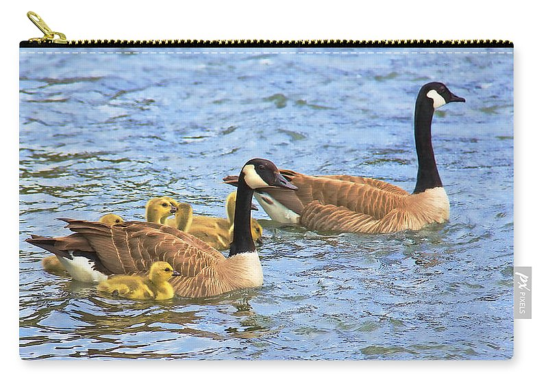 Canada Goose Carry-all Pouch featuring the photograph Canadian Geese And Goslings Blue Waters by Jennie Marie Schell