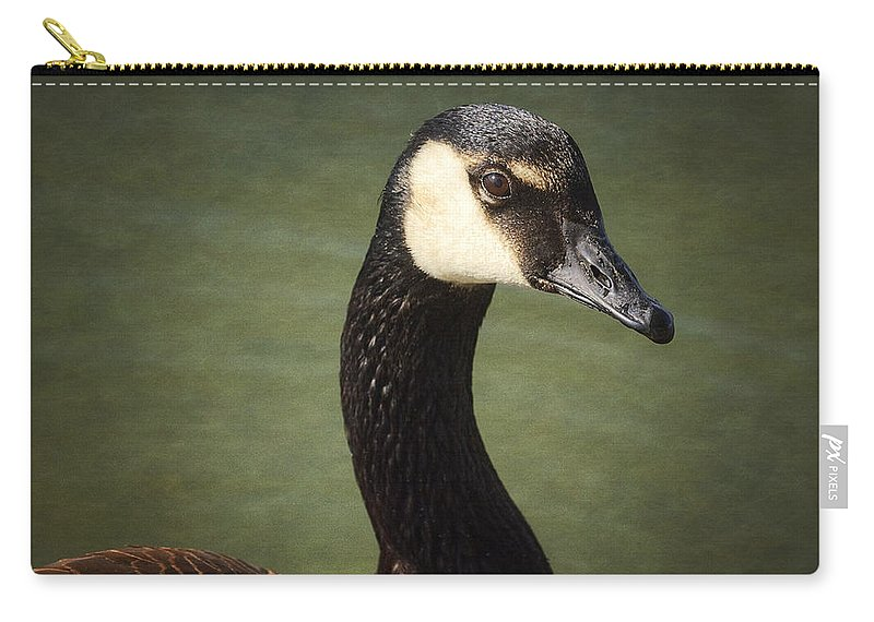 Canadian Goose Carry-all Pouch featuring the photograph Canadian Goose by Saija Lehtonen