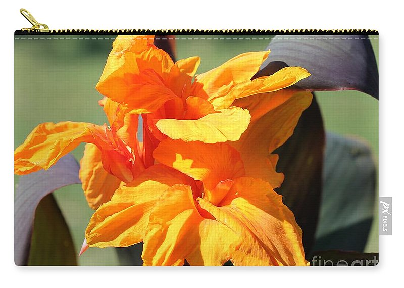 Mccombie Carry-all Pouch featuring the photograph Canna Lily Named Wyoming by J McCombie